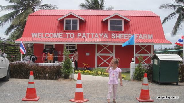 Pattaya Sheep Farm - 24 August 2013 - newpattaya.com
