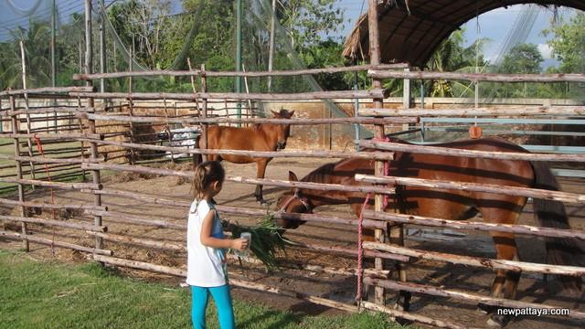 Greta Farm and Kitchen and Greta Kro - 11 September 2014 - newpattaya.com